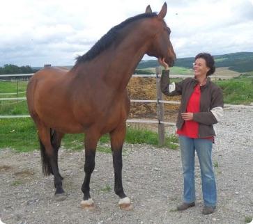 Tanja Tyroller, Pferd 2